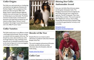 Collie Club of America home page